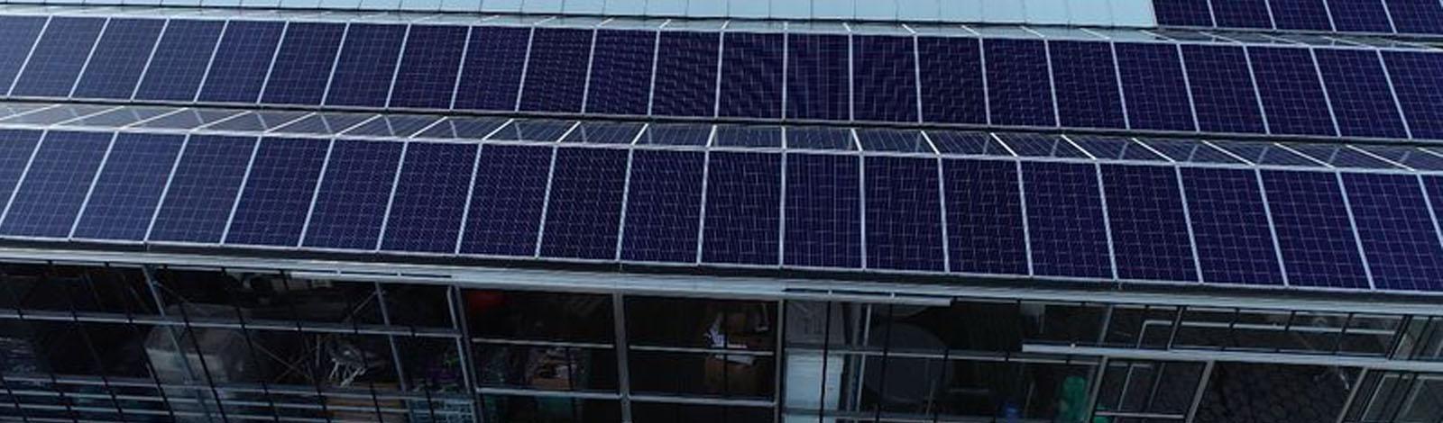 zonnepanelen op kassen in Haarlem