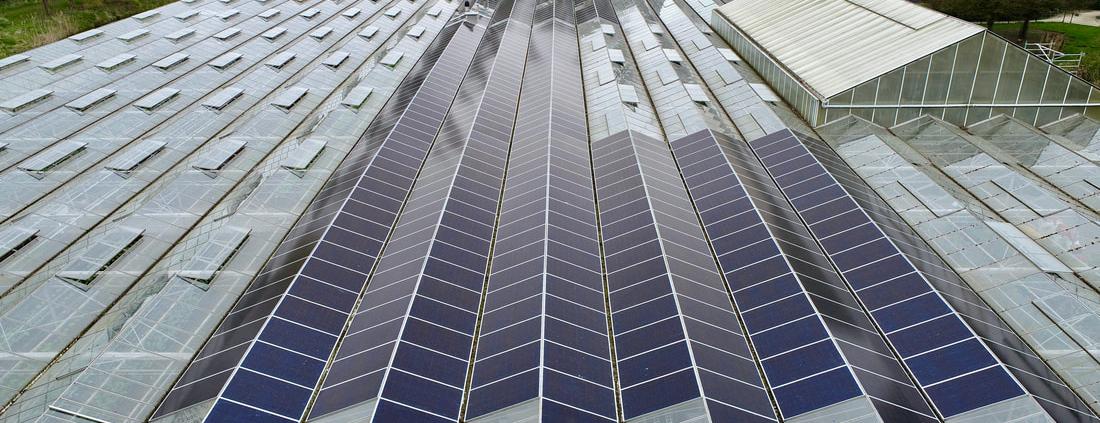 KweekZon zonnepanelen Dak Haarlem